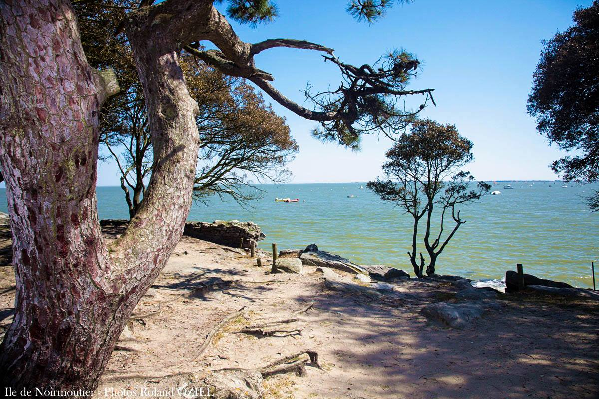 Plage Vendee France Noirmoutier Camping Côté Coast The Vendée NXPkn0w8O