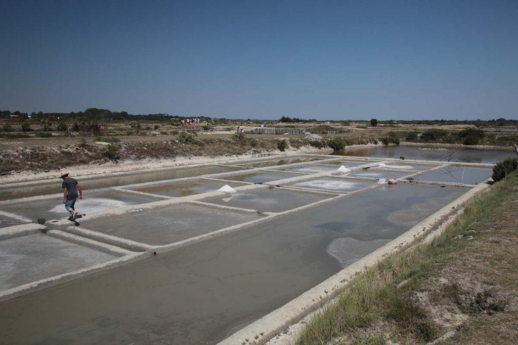 Marais salants de Vendée proches de saint jean de monts